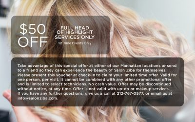 $50 Off Full Head of Highlight Services